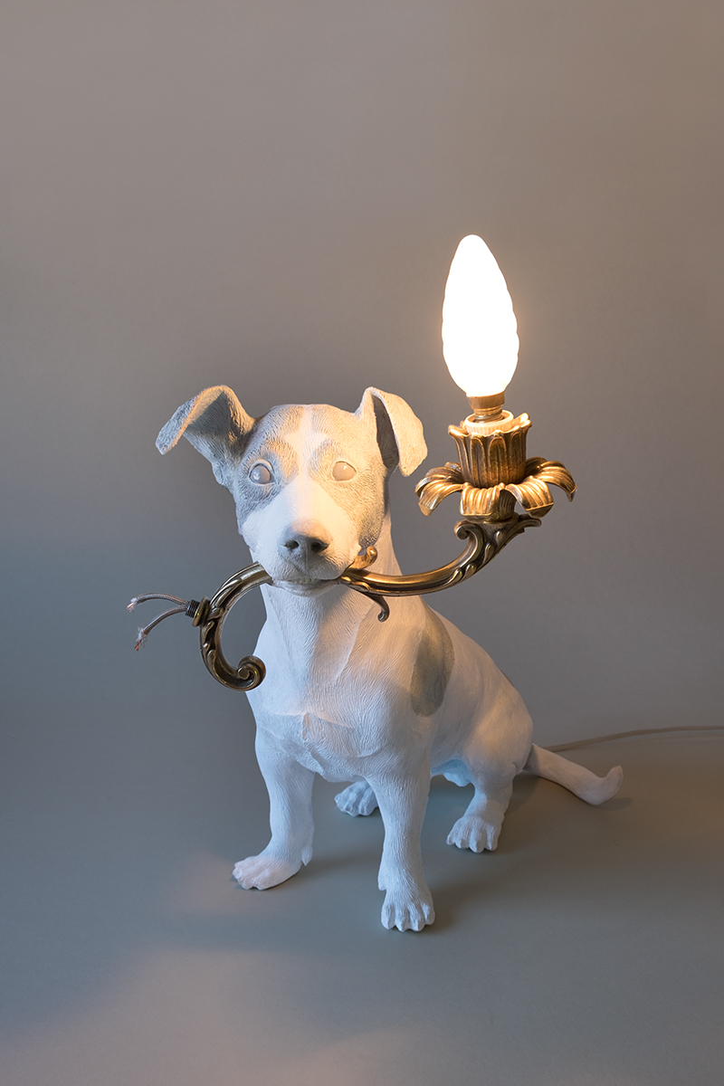 5 MINUTES ALONE... (DOG WITH A LAMP) - Marcantonio design