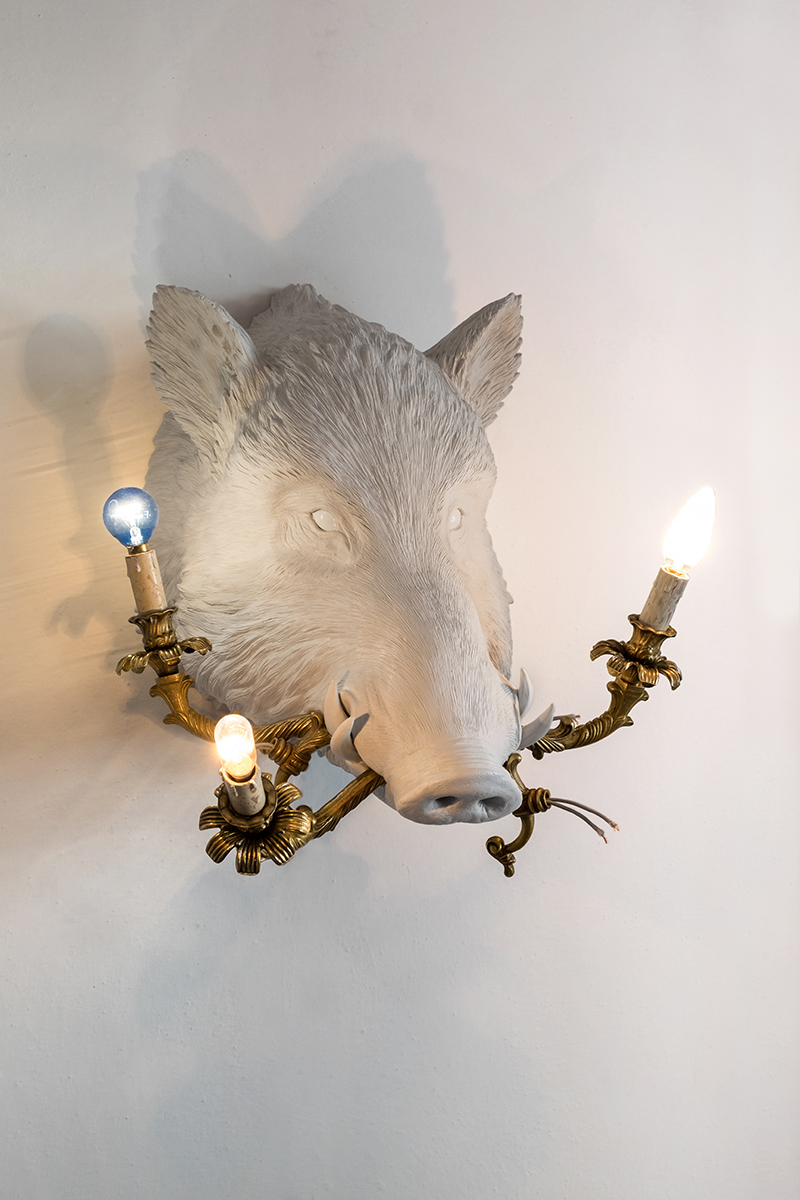 WHAT A BOAR! (BOAR WITH LAMPS) - Marcantonio design