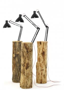 a tree trunk becomes a lamp - Marcantonio design