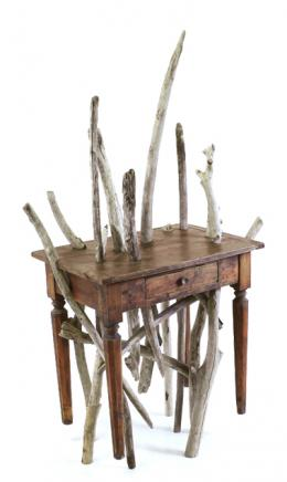 branches are growing inside a table - Marcantonio design